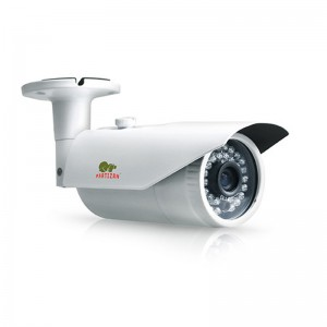 IP Видеокамера Partizan IPO-1SP POE v1.0